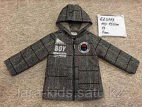 Пальто и ветровки для мальчиков