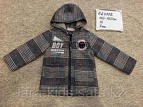 Куртки и ветровки для мальчиков.