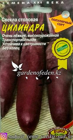 """Семена пакетированные Euro Extra. Свекла столовая """"Цилиндра"""", фото 2"""