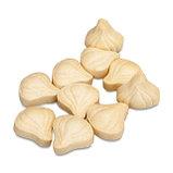 NUTRILITE™ Чеснок 120 таблеток, фото 2