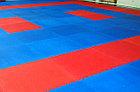 Будо-маты, додянг, татами ласточкин хвост 25мм (Россия), фото 7