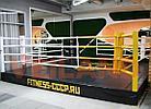 Боксерский ринг на помосте 6х6 м (боевая зона 5х5 м), помост 0,5 м, фото 3
