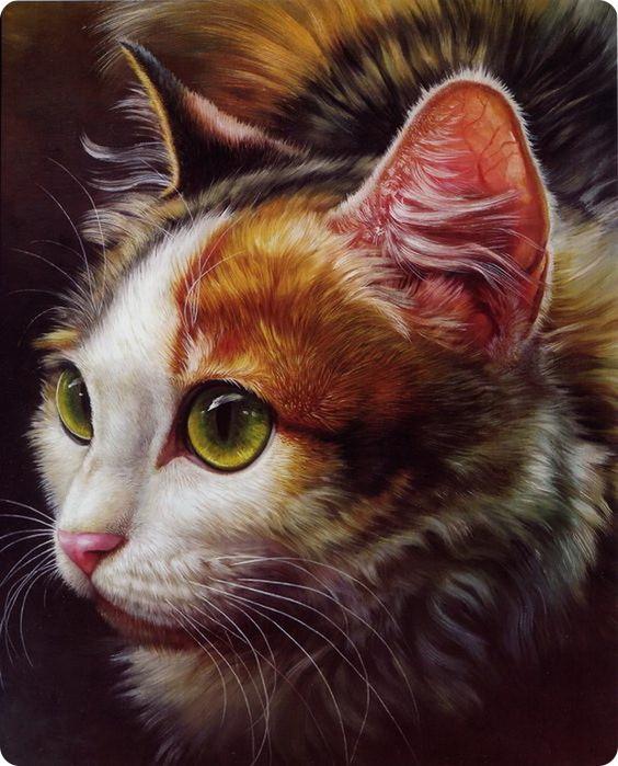 Картины стразами - Трехцветный кот - 40х50см