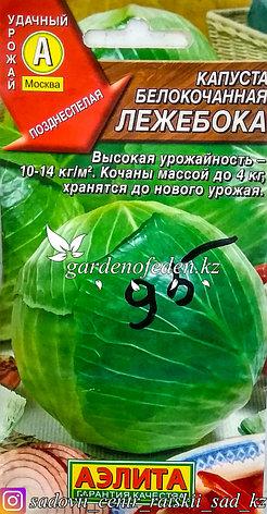 """Семена пакетированные Аэлита. Капуста белокочанная """"Лежебока"""", фото 2"""