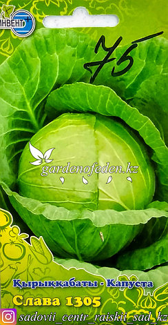 """Семена пакетированные Инвент+. Капуста белокочанная """"Слава 1305"""", фото 2"""