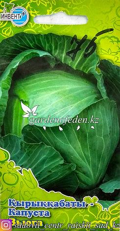 """Семена пакетированные Инвент+. Капуста белокочанная """"Вьюга"""", фото 2"""