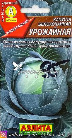 """Семена пакетированные Аэлита. Капуста белокочанная """"Урожайная"""", фото 2"""
