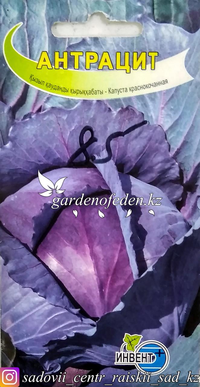 """Семена пакетированные Инвент+. Капуста краснокочанная """"Антрацит"""""""