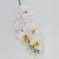 """Цветы искусственные """"Орхидеи"""" (Силикон)"""
