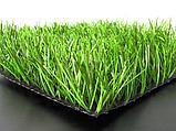 Укладка футбольного газона Limonta, фото 3