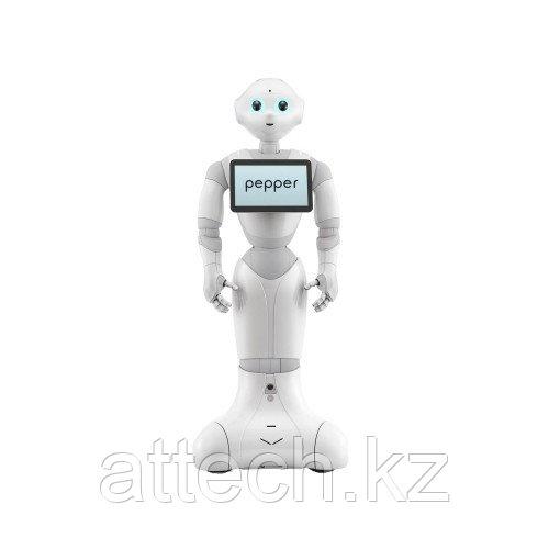 Гуманоидный робот PEPPER