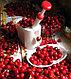 Выниматель косточек из вишен Cherry Pitter (Черри Питер), фото 3