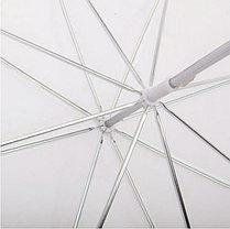 2 зонта 82 см на просвет с патроном с лампой 175 W на стойках, фото 2