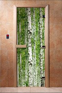 Дверь с фотопечатью, арт.А084, 190х70, 8 мм, 3 петли, коробка ольха. Банный Эксперт