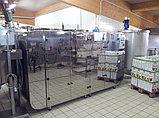 Tauro Essicсatori B.MASTER BM40 400 V профессиональная промышленная сушилка для фруктов овощей ягод грибов, фото 2