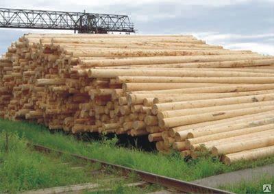 Деревянная пропитанная опора ЛЭП 11 метров.