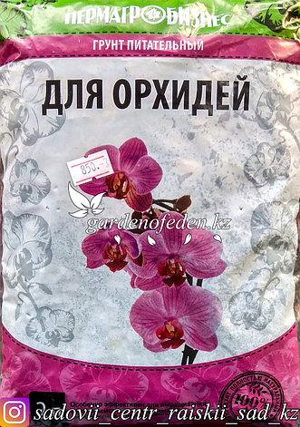 Пермагро Бизнес. Питательный грунт для орхидей. 2л., фото 2