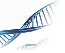 ДНК-тестирование Wellness (здоровье)