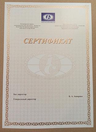 Сертификаты, грамоты, дипломы, фото 2