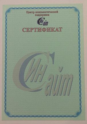 Свидетельство и сертификат, фото 2