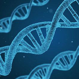 Аккредитация молекулярно генетической лаборатории