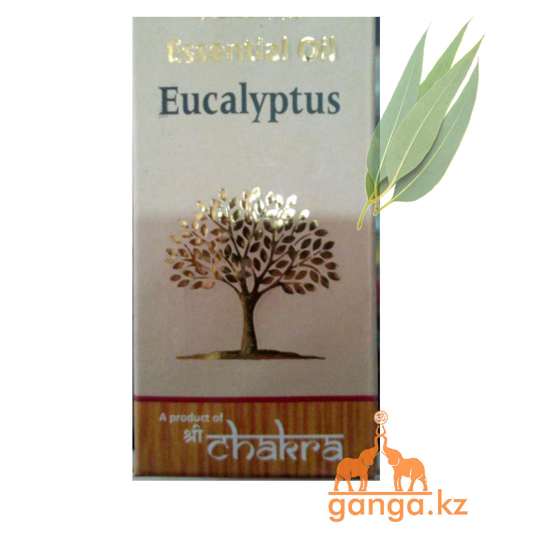 Натуральное эфирное масло  Эвкалипт (Eucalyptus essential oil), 10 мл