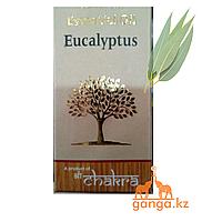 Натуральное эфирное масло Эвкалипт (Eucalyptus essential oil), 10 мл