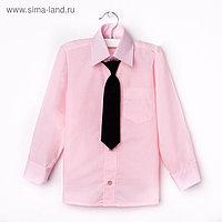 Сорочка для мальчика, нарядная с галстуком, рост 122-128 см (31), цвет светло-розовый 1181А 19208
