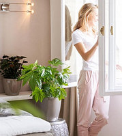 Советы по уходу за растениями зимой