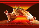 Печь для пекинской утки, фото 5