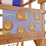 Детская игровая площадка Тасмания, фото 9