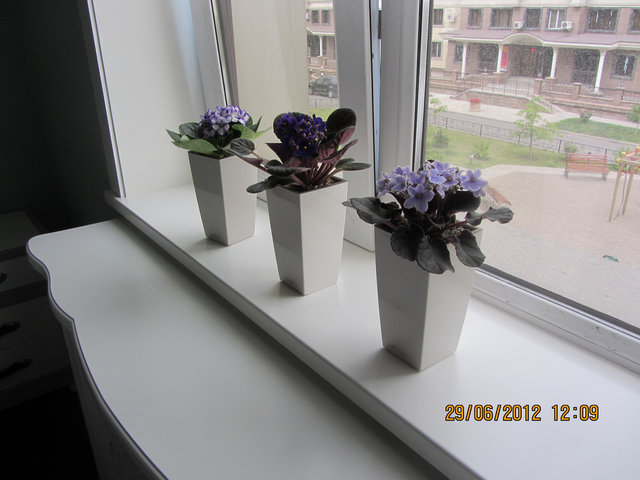 Горшки для цветов как внутри, так и на улице -1