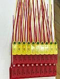 Пластиковые номерные пломбы, длина 220 мм, фото 3
