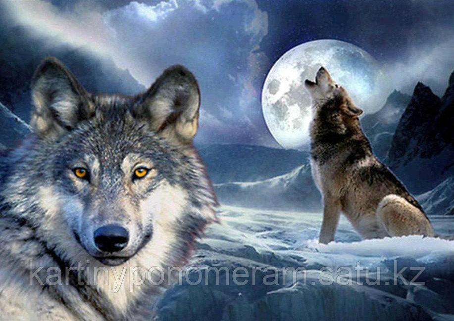 """Картина стразами на подрамнике (50х60 см)""""Волки под луной"""" MYL-140"""