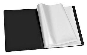 Папка с прозрачными вкладышами, 40 листов, CLEAR BOOK