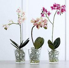 Кашпо и горшки для орхидей