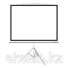 """Экран на треноге Deluxe DLS-T153xW (60""""х60""""), Ø - 85"""", Раб. поверхность 149х149 см., 1:1"""