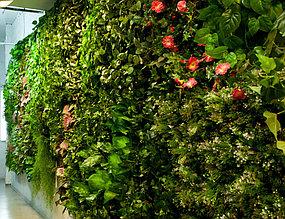 Фитостена вертикальная из искусственных растений
