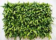 Фитостена вертикальная из искусственных растений, фото 7