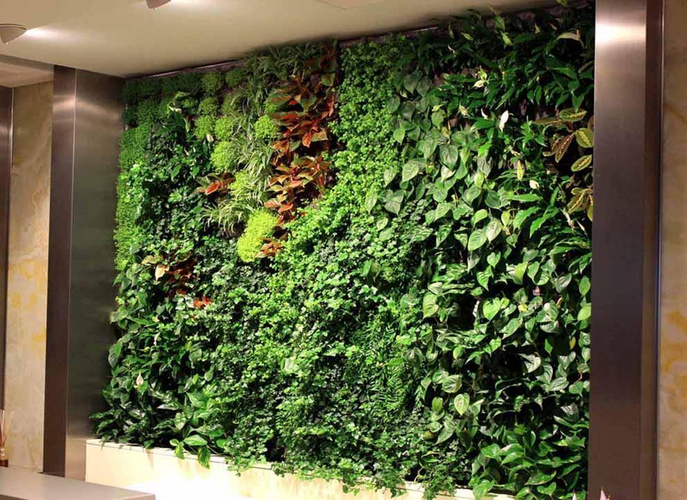 Зеленая стена искусственная