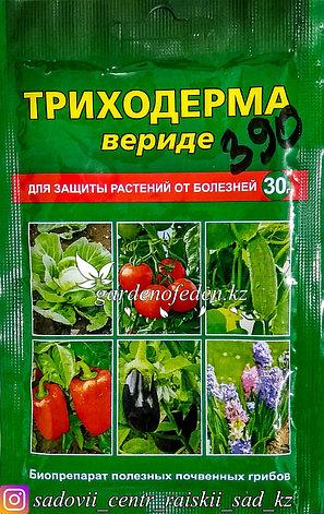 Фунгицид «Триходерма Вериде» для защиты растений от болезней 30г., фото 2