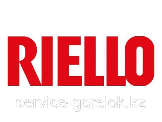 Насос RIELLO R.B.L. 2566142 в комплекте