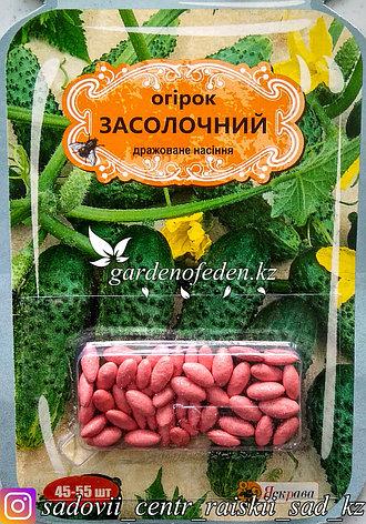 """Семена пакетированные Яскрава (дражированные). Огурец """"Засолочный""""., фото 2"""