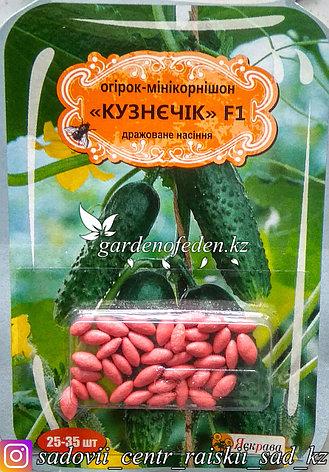 """Семена пакетированные Яскрава (дражированные). Огурец """"Кузнечик F1""""., фото 2"""
