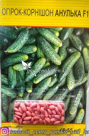 """Семена пакетированные Яскрава (дражированные). Огурец """"Анулька F1""""., фото 2"""