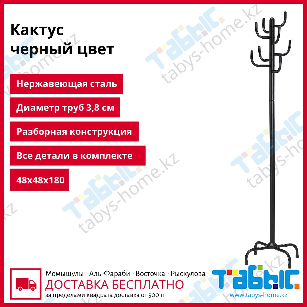 Напольная вешалка для прихожей Табыс Кактус GC 0413-2 (черный цвет)