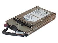Жесткий диск HP 300Gb 10K FC BD30058232 для EVA 4100, 359461-007, 364622-B22, 364622-B22
