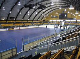 Защитное покрытие для льда арены