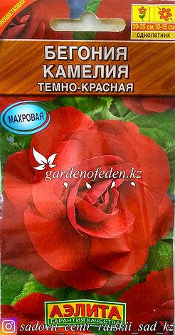 """Семена пакетированные Аэлита. Бегония """"Камелия темно-красная""""., фото 2"""