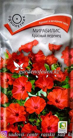 """Семена пакетированные Поиск. Мирабилис """"Красный леденец""""., фото 2"""